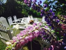 Sommarmiddag i trädgården